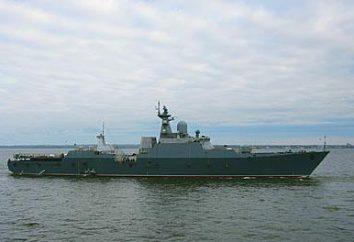 """Buyan-M"" progetto 21631. Piccolo missile nave Progetto 21631 ""Buyan-M"""