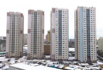 Die Hochspannungs-Reise nach Moskau: eine kurze Beschreibung, Merkmale