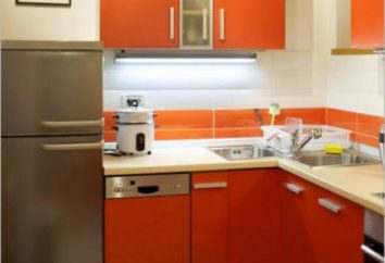 Cucina design 8,8 metri quadrati. m le loro mani, le foto