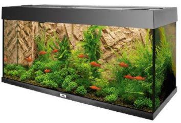 Aquarium Stand – solution multifonctionnelle et élégante