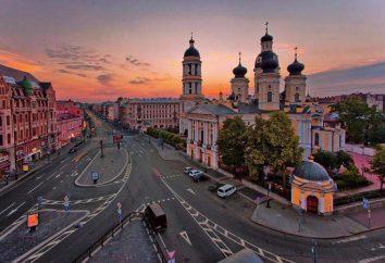 Catedral de St. Vladimir em São Petersburgo: História