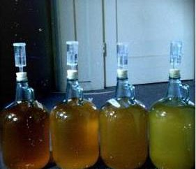 Chiarimento di mash. Preparazione di mash zucchero per distillazione