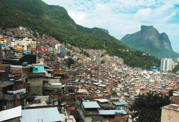 Brazylijczyk faveli – szczególny sposób życia milionów ludzi