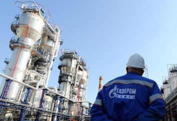 "Dyrektor ""Gazpromem"" na straży dobrobytu narodowego"