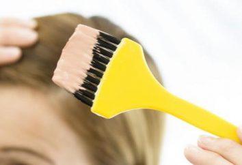 tinturas de cabelo profissionais: classificações e comentários