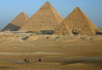 Jaki język używany w Egipcie? Wycieczka do historii i dziś