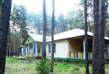 """camp pour enfants """"Red Hill"""" (Ekaterinburg): vacances, photo, comment obtenir commentaires"""