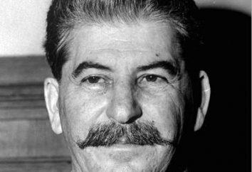 pages sanglantes de l'histoire soviétique. Pourquoi collectivisation accompagné de spoliation?
