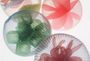 Diese atemberaubenden Dekorationen werden die Liebhaber des Meeres befriedigen