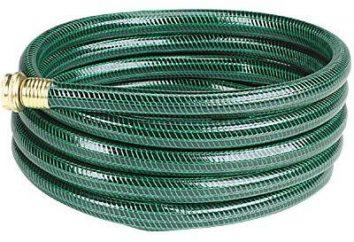 Wąż ogrodowy: opis głównych odmian i ich właściwości