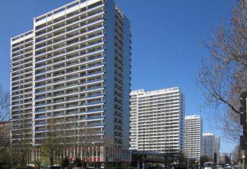 O que está incluído na revisão do prédio de apartamentos? Lista dos principais tipos de trabalho. Questões financeiras