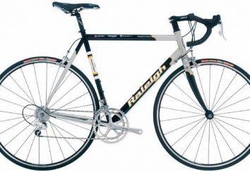 biciclette professionali: in particolare il trasporto