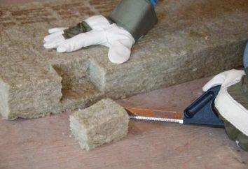Materiais de isolamento para paredes do apartamento: comentários e recomendações para a seleção