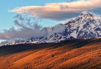 Dove sono le montagne dorate di Altai? Foto Golden Mountains of Altai
