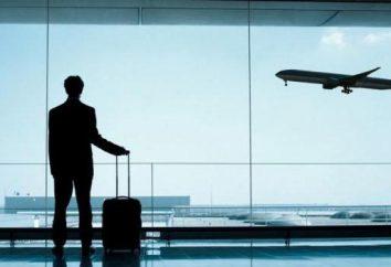 Marzenia samolotów na niebie: co mówi książka snów? Późno na samolot we śnie – dlaczego?