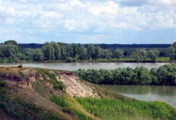 Relaks w regionie Omsk. Ośrodek rekreacyjny w Omsk Region