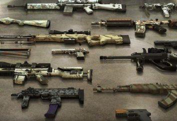 Collezioni CS: GO (armi). L'arma più costoso del CS: GO