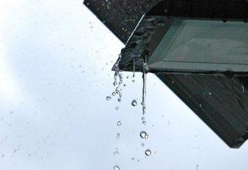 """Origine, esempi e significato: idioma """"dopo la pioggia il Giovedi"""""""