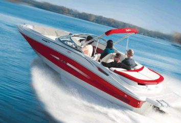 Jak i gdzie uzyskać prawa do łodzi z silnikiem. zarządzanie motorówka: dokumenty