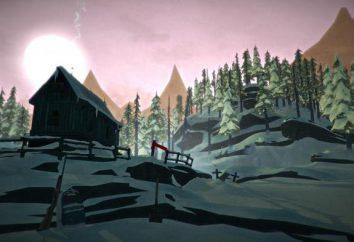 Il Long Dark: recensione del gioco