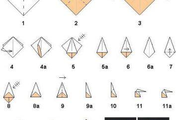 master class, como fazer origami em 8 de Março, com as mãos