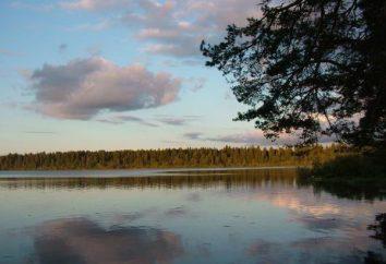 Os lugares mais interessantes e pontos turísticos da região de Novgorod