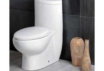 """CD toaleta """"komfort"""", specyfikacje techniczne i łatwość użytkowania"""