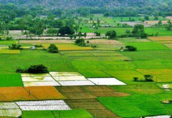 Les transferts de terres d'une catégorie à l'autre: les conditions et la procédure