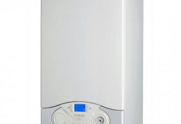 """Caldaia a gas """"Naven"""" – la migliore soluzione al problema del riscaldamento e approvvigionamento idrico"""