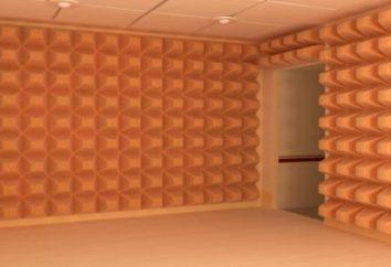 Le camere sono insonorizzate: caratteristiche chiave