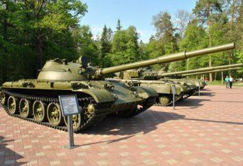 """Partisan Wiese"" in Bryansk"