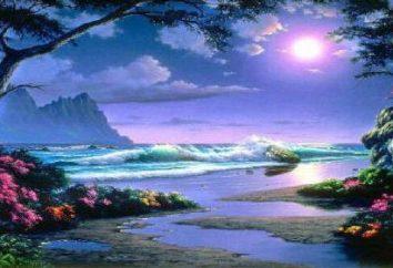 Paradise – quel est-il? Comment se rendre au ciel?