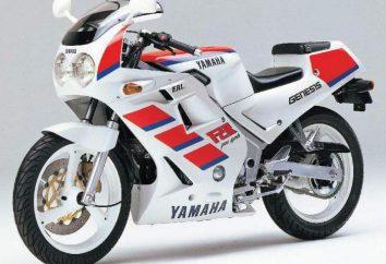 Przegląd motocykla Yamaha FZR 250