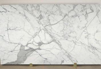 Marmorplatte: eine Beschreibung der Vorteile, Merkmale Styling
