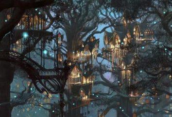 Elfes (Terre du Milieu): histoire, description, noms