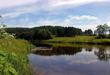 Lac Aiat dans la région de Sverdlovsk: loisirs, pêche