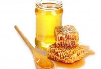Trauminterpretation: Was Honey Träume über
