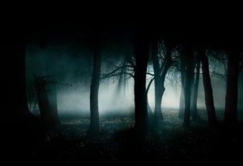 ¿Cuál es la noche? análisis detallado