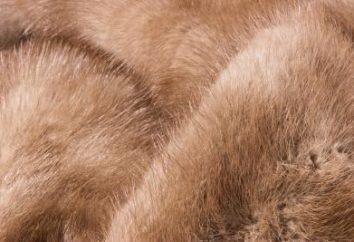 Type de fourrure naturelle: une vue d'ensemble, types et caractéristiques des chaussettes