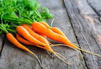Salade de carottes: recette, en particulier la cuisine et recommandations
