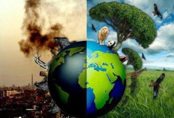 Środowiskowy zespół propaganda: skrypt. tale środowiska. Kodeks środowiskowy mieszkaniec Ziemi