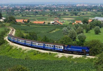 Co zabrać ze sobą do pociągu: Najbardziej potrzebne rzeczy w drodze