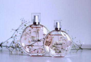 """""""Chanel Possibilidade Sobre Viv"""": comentários. Se você está determinado?"""