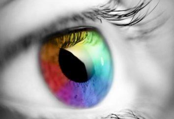A percepção humana da cor. A influência da cor sobre humana