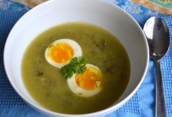 Szczaw zupa jak gotować szybko i smaczne