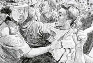 Los conflictos sociales: concepto, tipos, funciones