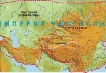 Educação do poder mongol: causas, curso eo resultado da