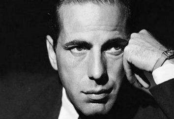 Die besten Schauspieler der Welt: eine Liste der Bewertung, die Namen und Biographien