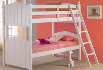 La nécessité de suivre au moment de choisir un lit pour deux enfants?