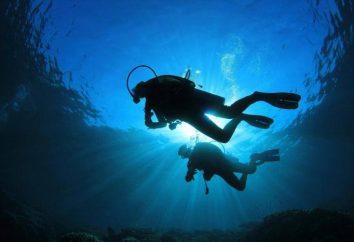 Férias pessoas profissão heróica – mergulhador Dia